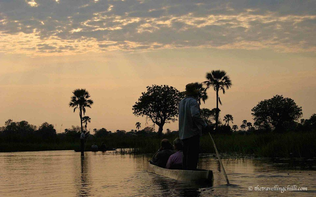 botswana delta okavango poler mokoro