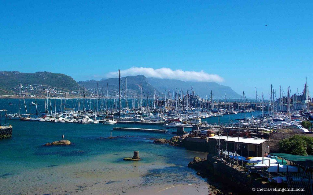 simons town south africa