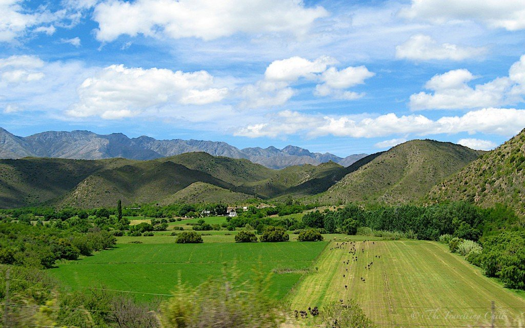 Picture of Swartberg Mountains