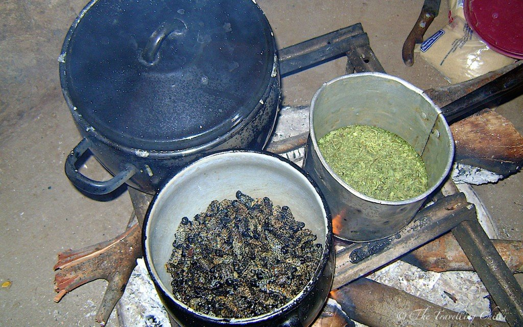 fried mopane worms | fried mopani worms