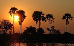Okavango Delta sunset Botswana