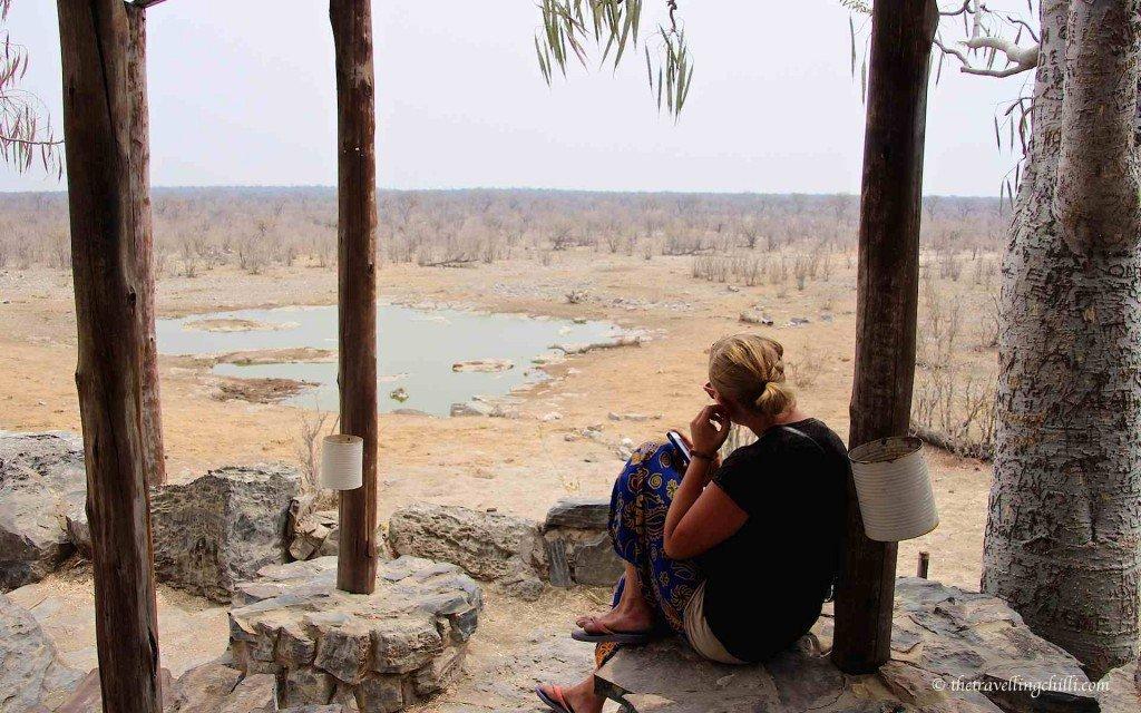 Waterhole Halali Etosha Namibia