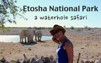 Etosha – A waterhole safari