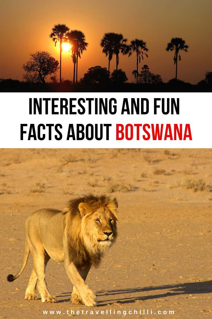 Interesting facts about Botswana | Botswana Facts | Botswana tourism