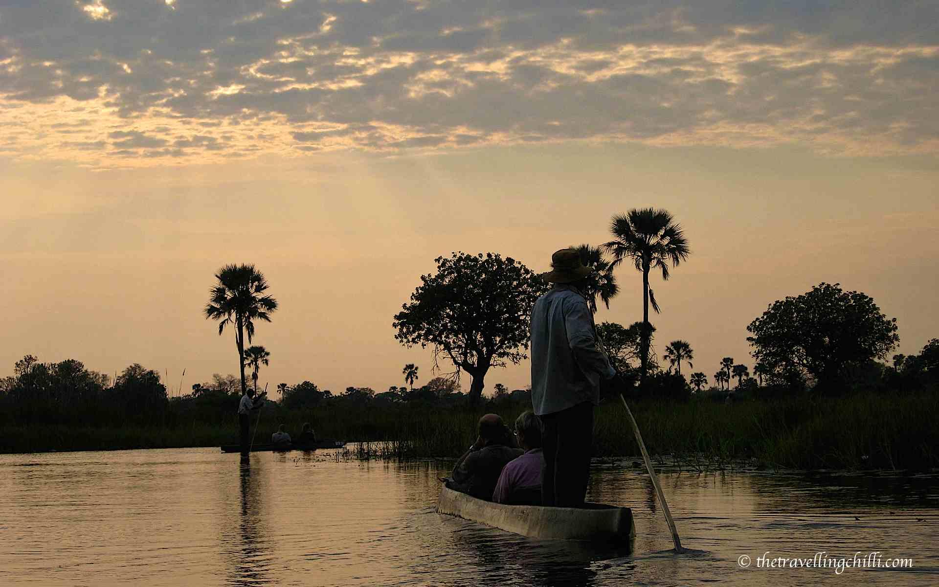 13 Interesting facts about Botswana - The Travelling Chilli Okavango Basin Information System