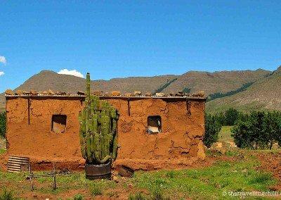 Rustic village dwelling