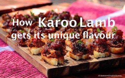 How Karoo Lamb gets its unique flavour