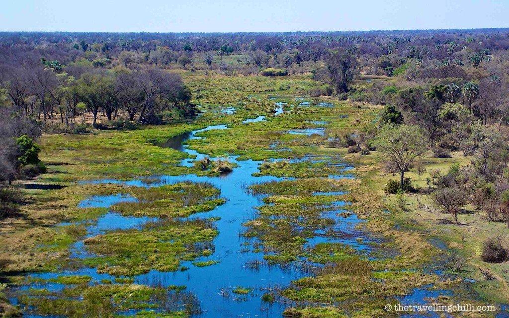 botswana okavango delta natural wonders africa