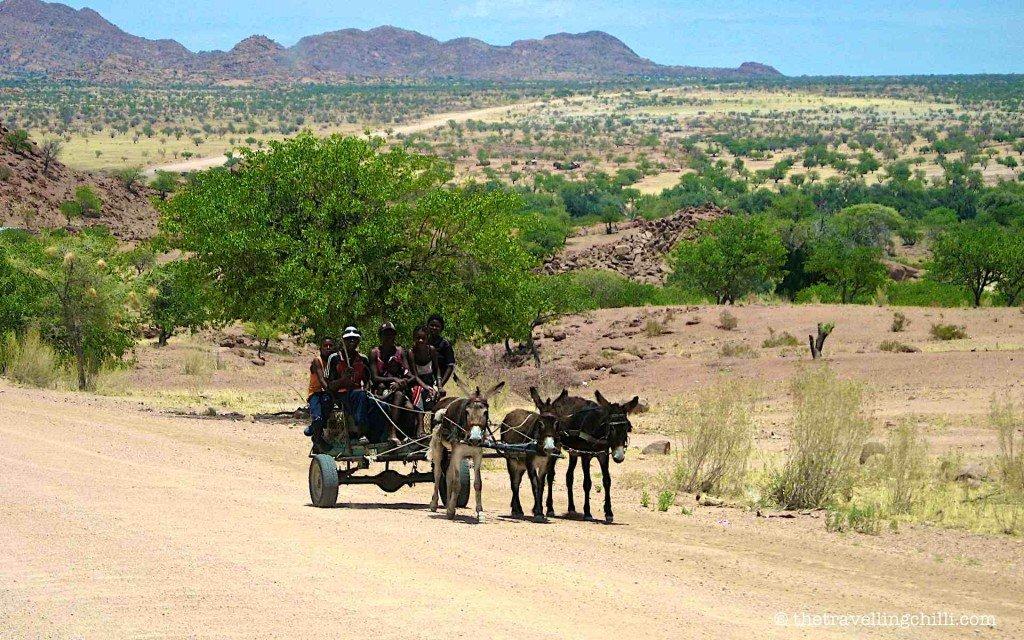 namibia herero damara