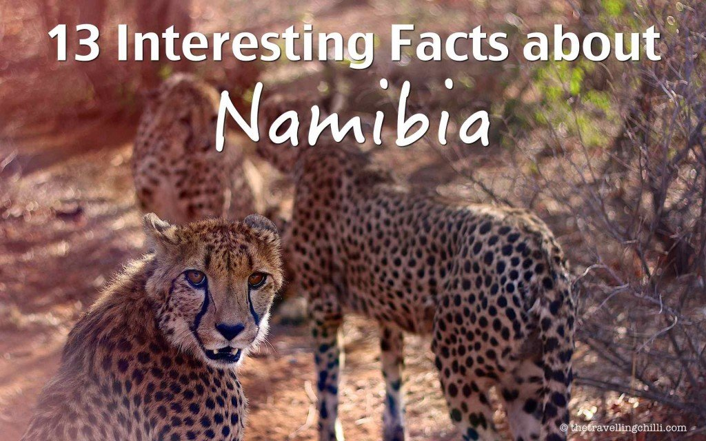 3 interesting facts about namibia