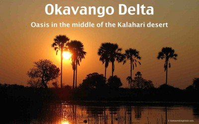 Okavango Delta – Oasis in the middle of the Kalahari desert