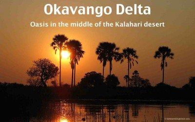 Okavango Delta – Oasis in the middle of the Kalahari desert
