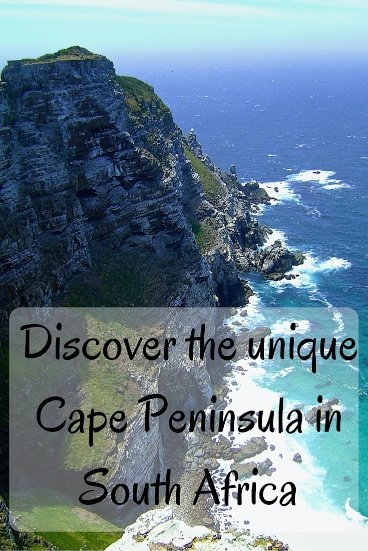 Discover the unique Cape Peninsula in South Africa Cape Town