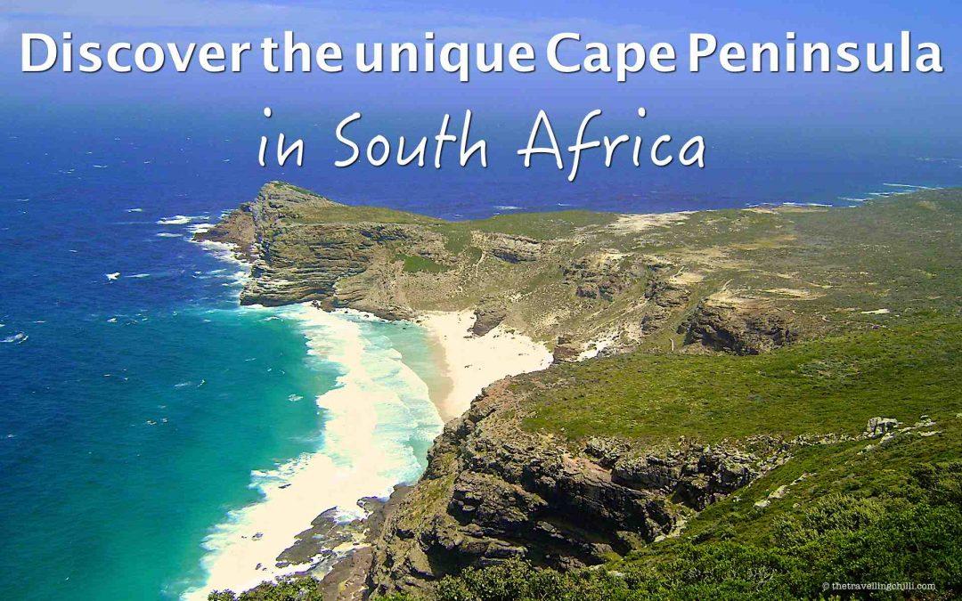 Discover the unique Cape Peninsula in South Africa
