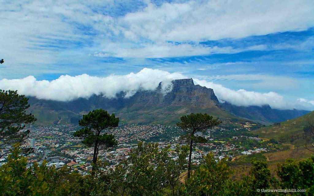 The Table Mountain table cloth Cape Town