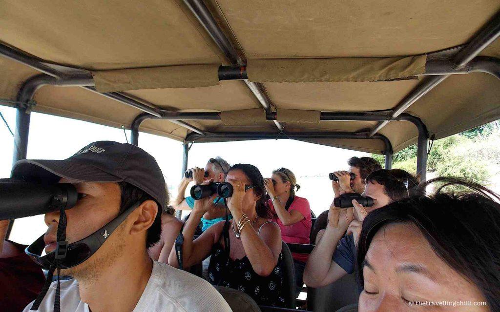 Binoculars during a safari in Africa