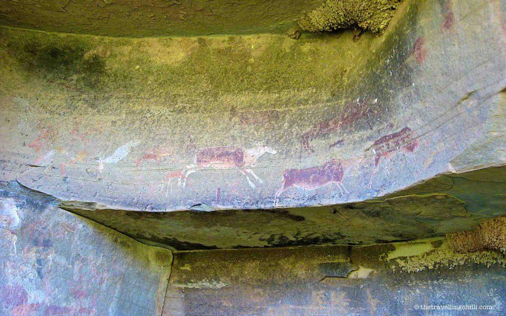 rock art bushman san south africa