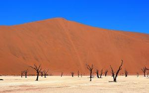 Deadvlei as part of Sossusvlei in Namibia