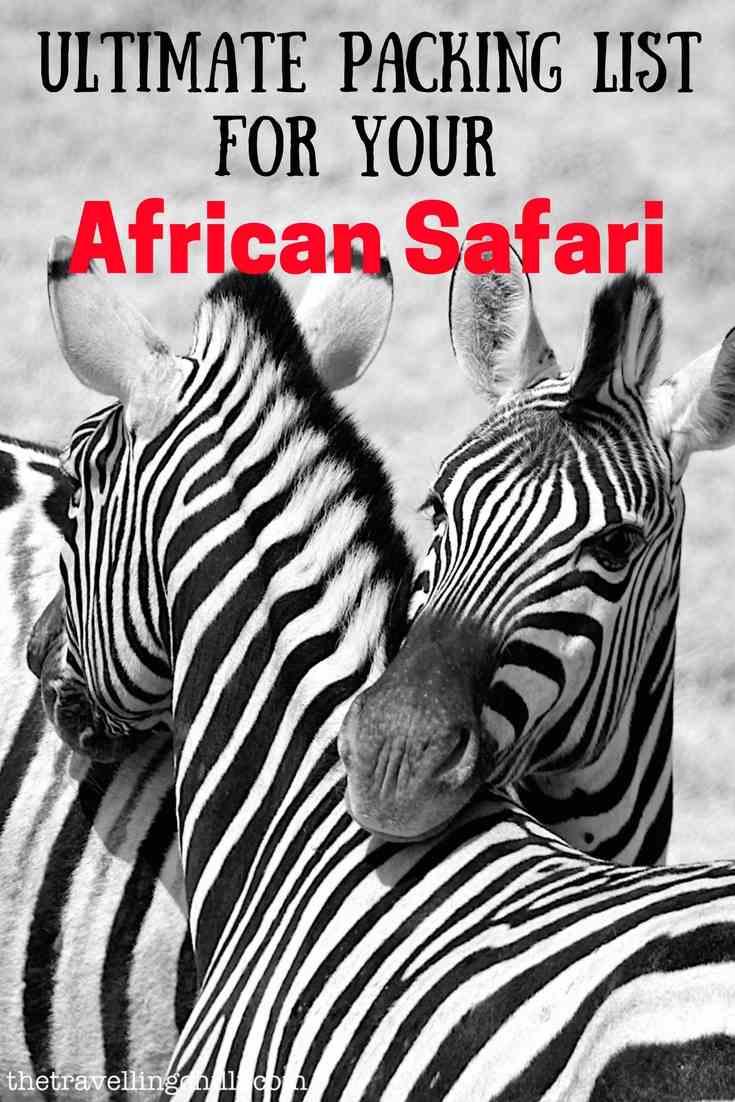 packing list safari africa zebra