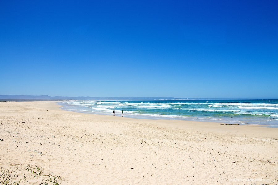 Beach JBay Jeffrey's Bay South Africa