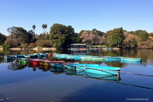 zoo lake parkview johannesburg south africa