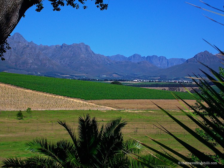 Stellenbosch winelands south africa