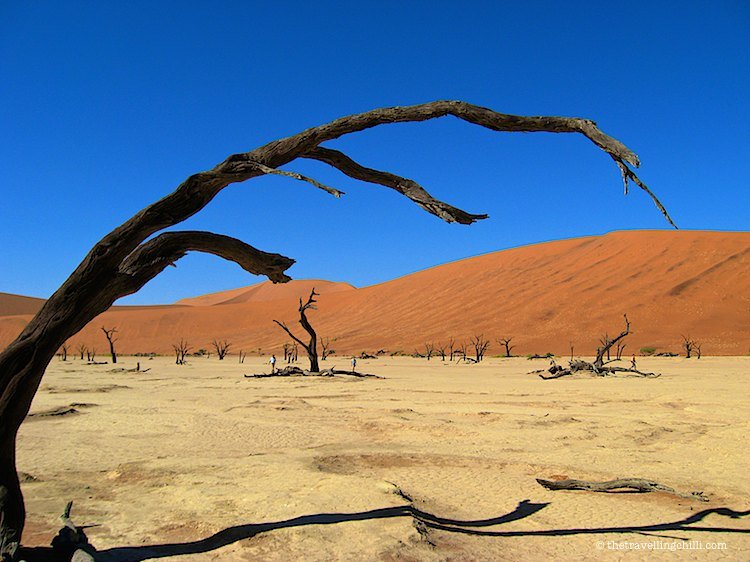 namibia sossusvlei deadvlei | visit Namibia | things to do in Namibia