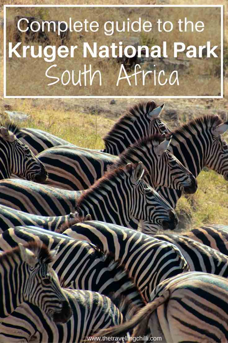 Complete guide to Kruger National Park in South Africa - The