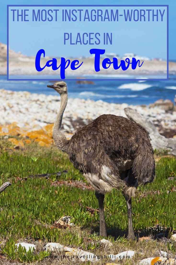 The most instagram worthy places in Cape Town South Africa