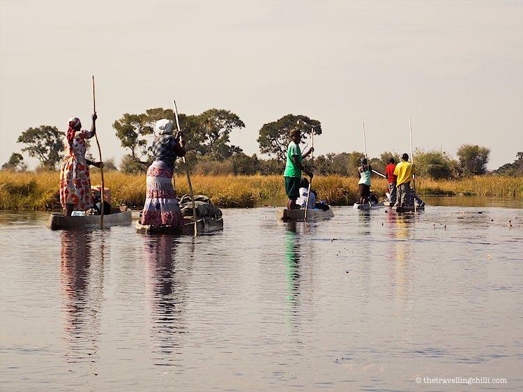 Moroko Okavango Delta Botswana