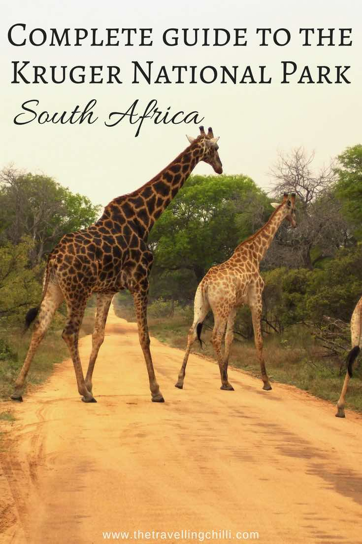 Complete guide to the Kruger National Park in South Africa