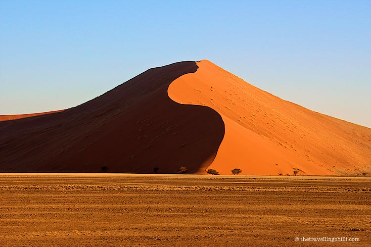 Red dunes of Sossusvlei in Namibia Naukluft during sunrise