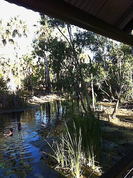 Mataranka Hot Springs in Australia