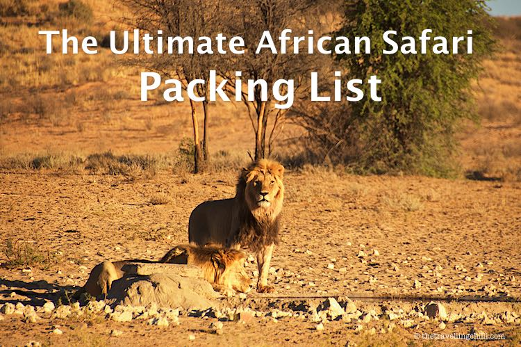 The ultimate African safari packing list with packing essentials for an safari in Africa