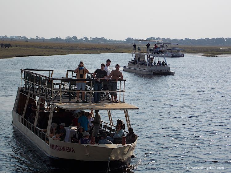 boat cruise Chobe River safari in Botswana