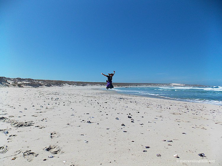 best beaches in South Africa to visit Namaqua National Park