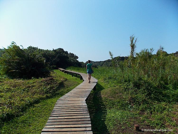 Things to do in Durban under R100 | Umhlanga lagoon nature reserve