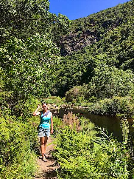 Hiking the Giant Kingfisher Trail Wilderness, Garden Route, South Africa