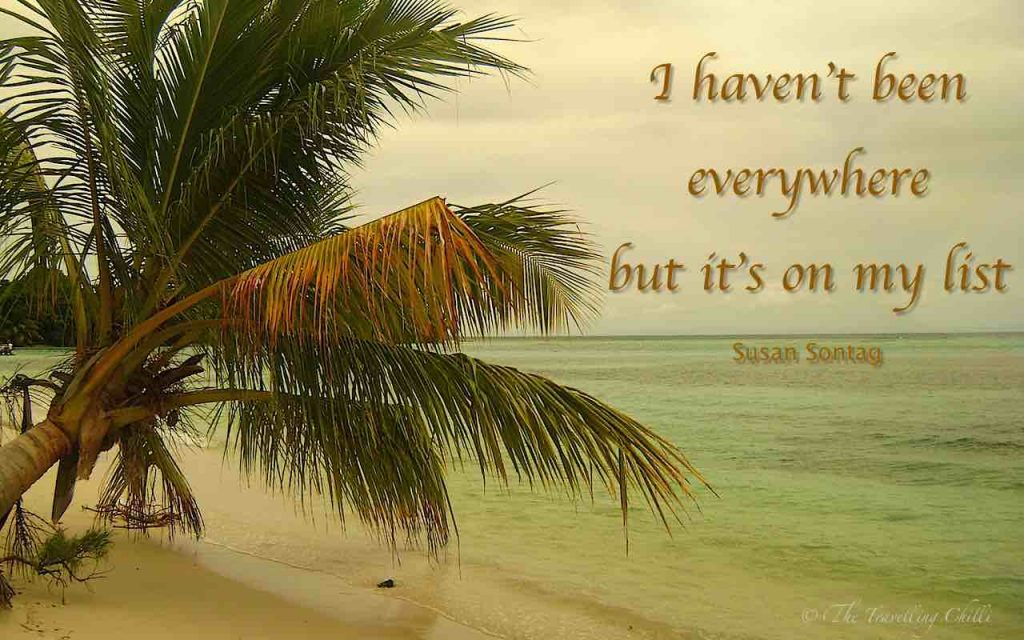 I haven't been everywhere but it's on my list | Susan Sontag | Road trip quotes | Quotes about the road | Quote about road trips | Travel Inspiration