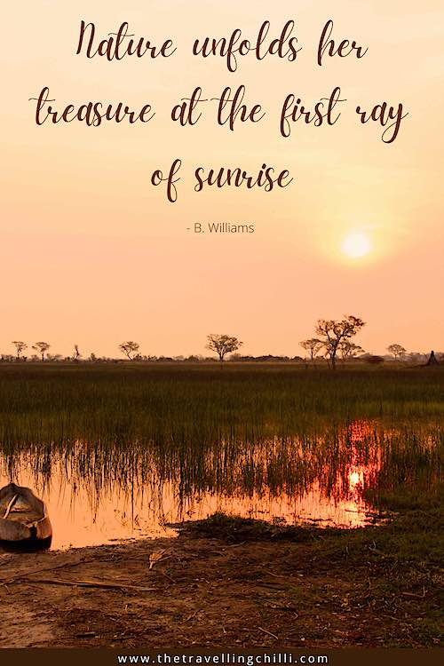 Sunrise caption - Nature unfolds her treasure at the first ray of sunrise B Williams